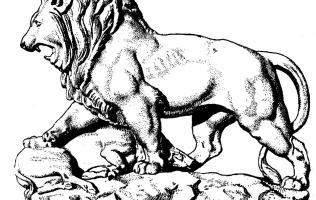 Львы и грифоны 3   Каталог архитектора (вып. 14)